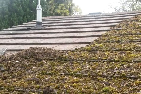 Roof moss removal Kent